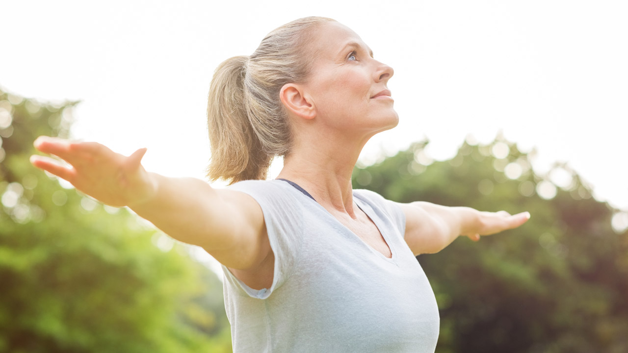 Dieta menopausia y colesterol