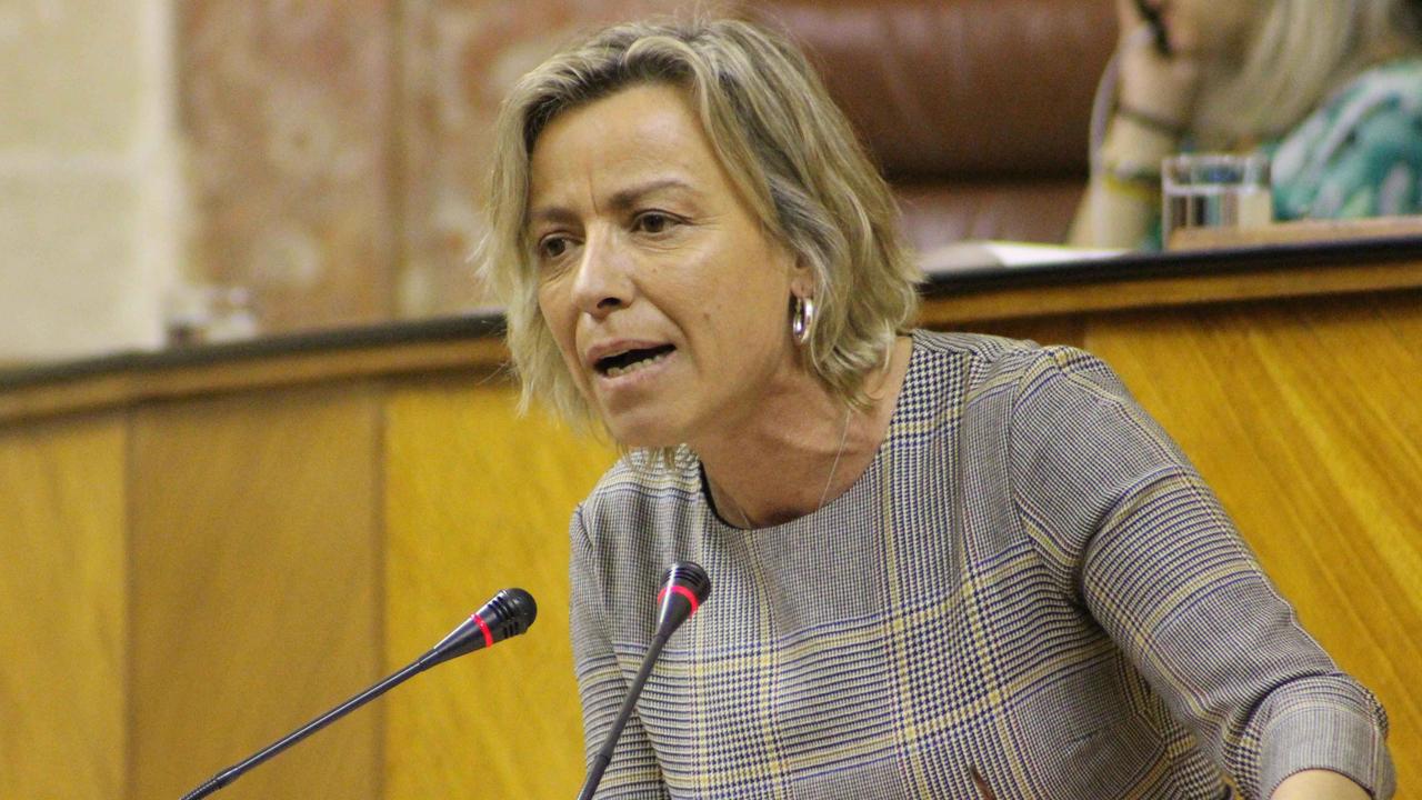 Isabel Albás, portavoz de Sanidad de Ciudadanos