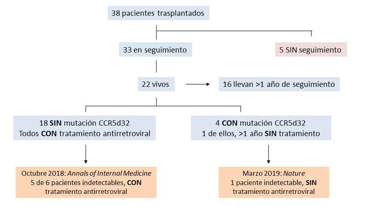 Comprender el papel del transplante alogénico (de un donante no idéntico) de células madre en la cura de la infección por el VIH.