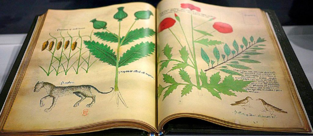 Libro incunable